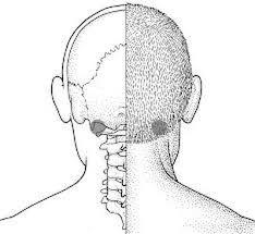 Секреты хорошего слуха