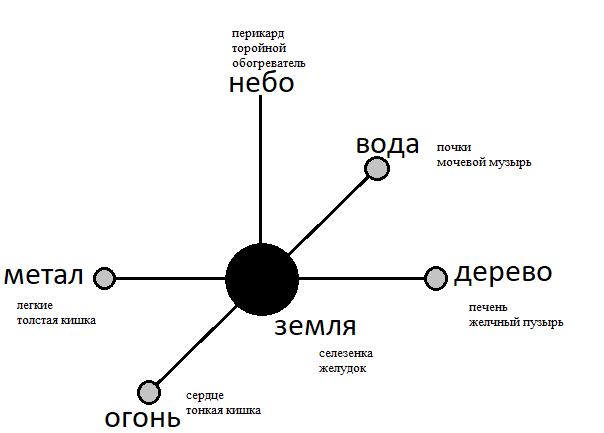 О шестом элементе, или таинственном органе Перикарде